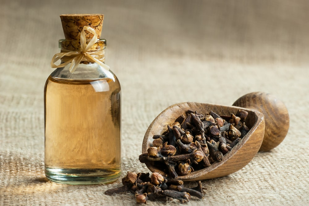 Clove Oil Remedy For Abscess Tooth